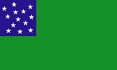 Green Sustainablity Flag