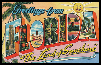 greetings from Florida vintage postcard