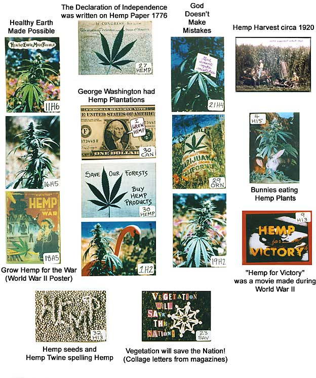 hemp magnets - Declaration of Independence