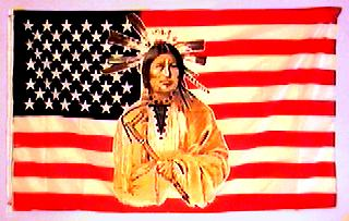 Native American Flag USA