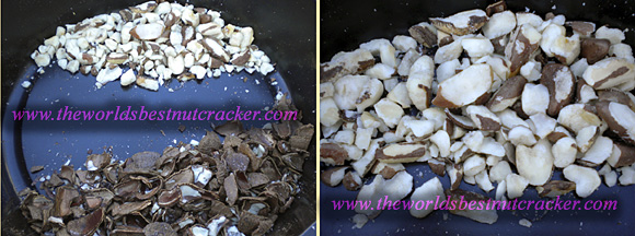 brazil nut cracker